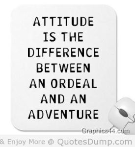 attitude-is-the-difference-between-an-ordeal-and-an-adventure-attitude-quote